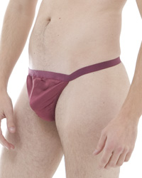 Pack of 4 Satin Silk G-String